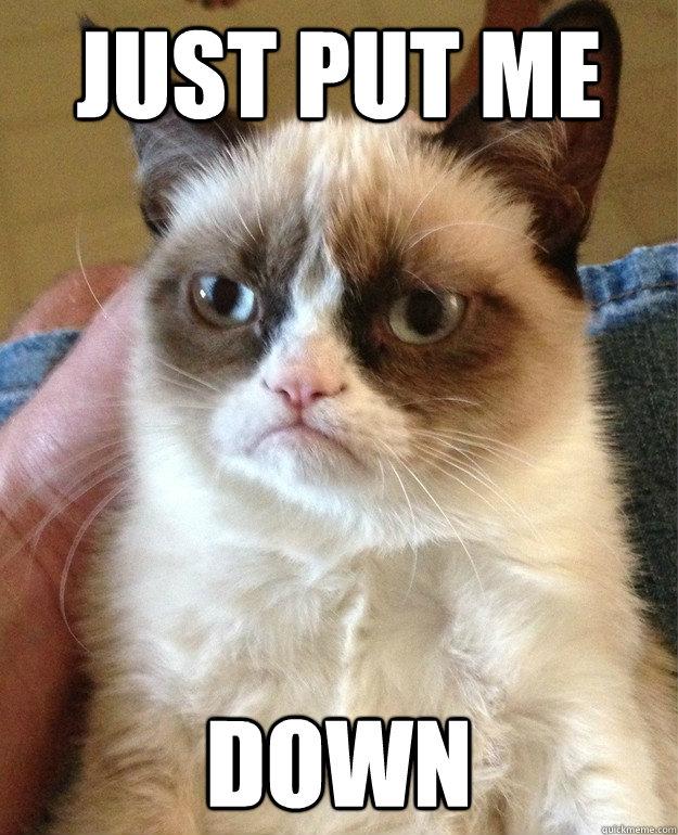 Tenses   The Grammar Cat