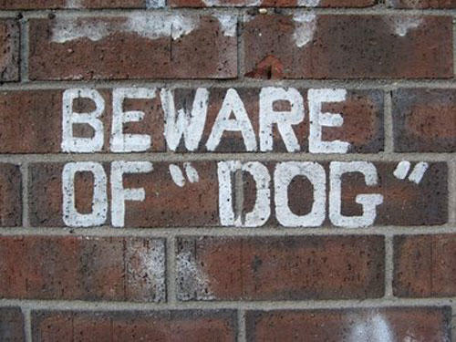 quotation-marks-beware-dog.jpg