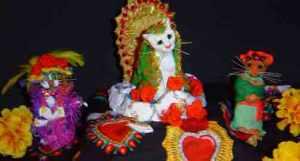 altar cat