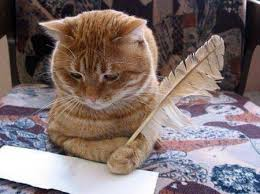 Image result for cats writing